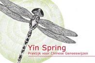 Logo Yin Spring